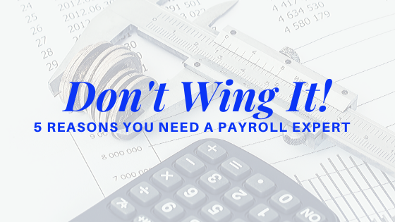 5 Reasons You Need a Payroll Expert